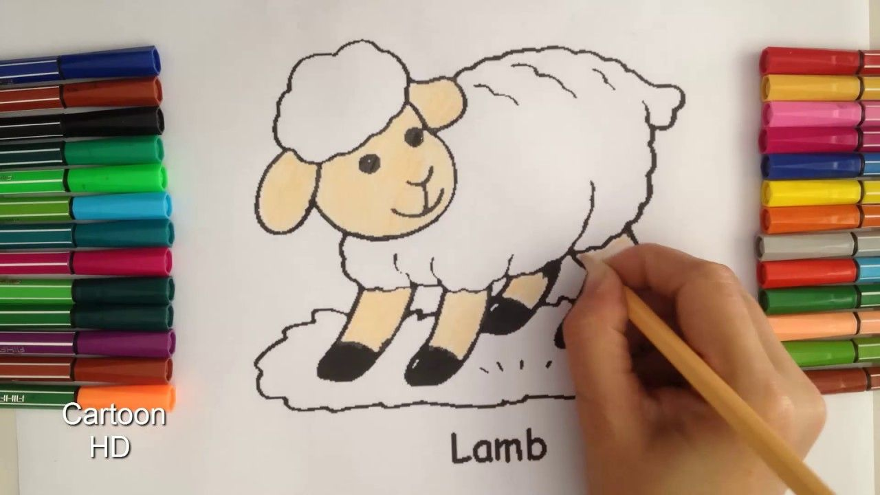 Sheep Coloring Pages For Kids - Sheep Coloring Pages - Cartoon HD ...