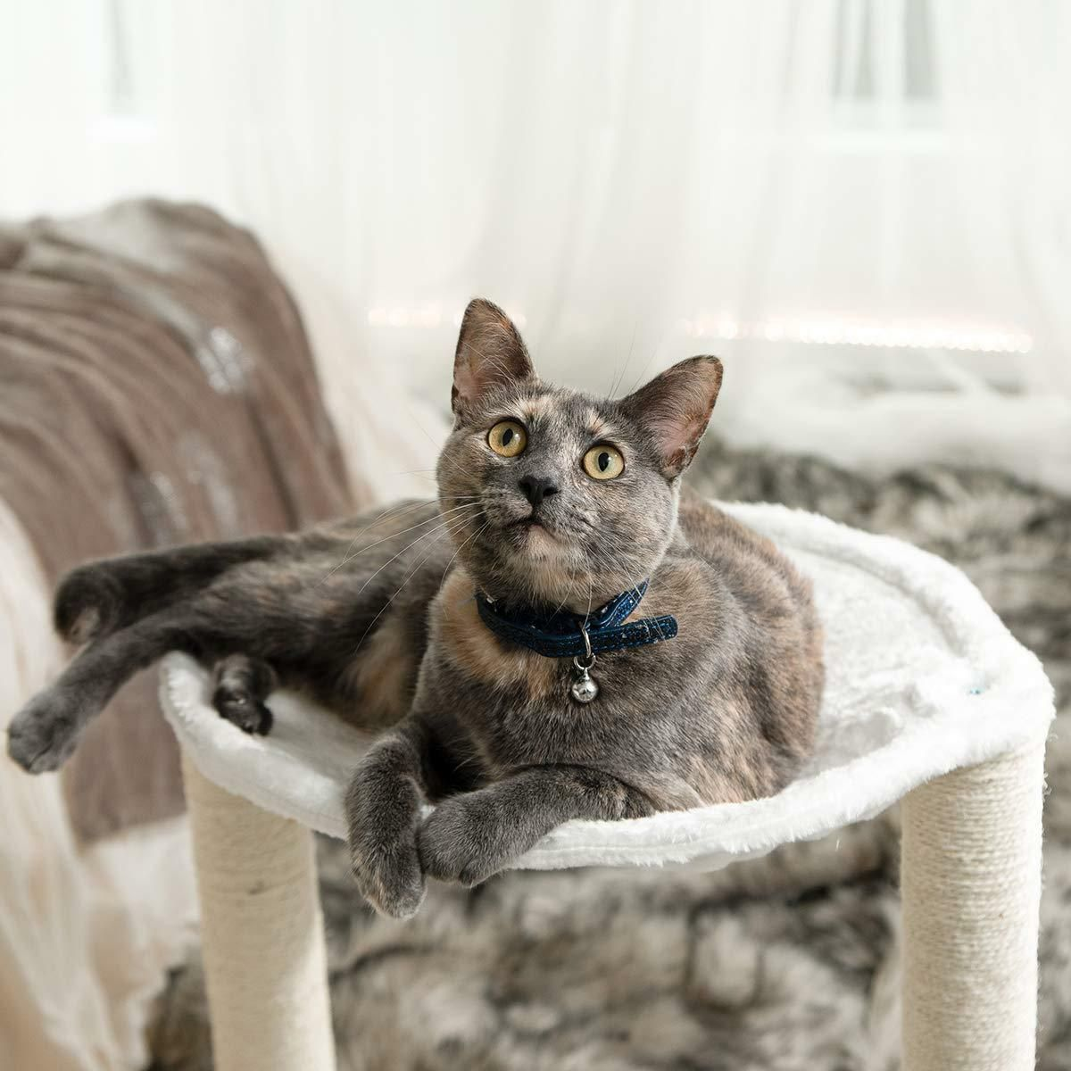 Pin by Nouhy Robertson on CATS | Cat tree condo, Cat bed ...