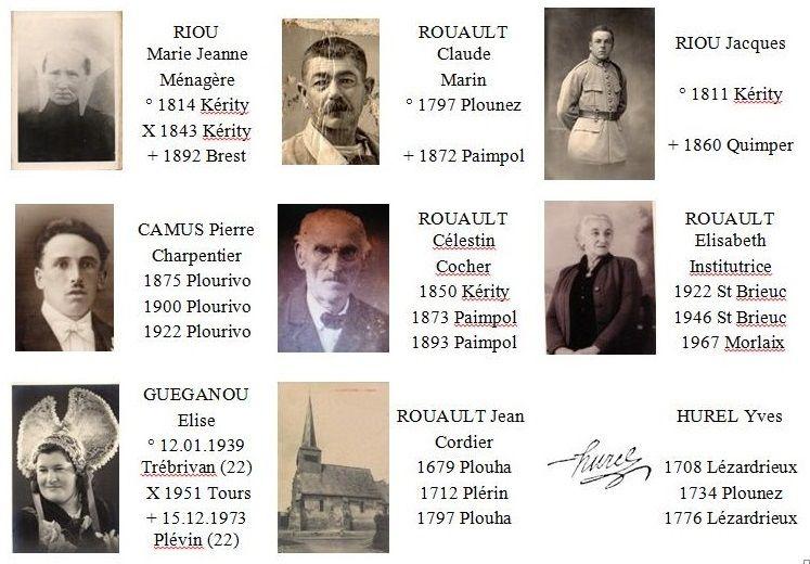 Etiquettes Autocollante Du Genesquisse Arbre Genealogique Universel Genealogie Arbre Genealogique Etiquettes Autocollantes