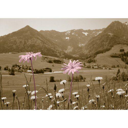 Poster Mountain Flowers, Grafikdruck in Braun East Urban Home Größe: 35,7 cm H x 50 cm B x 0,5 cm T, Wandfarbe: Silber, Farbe: Orange #mountainhomes