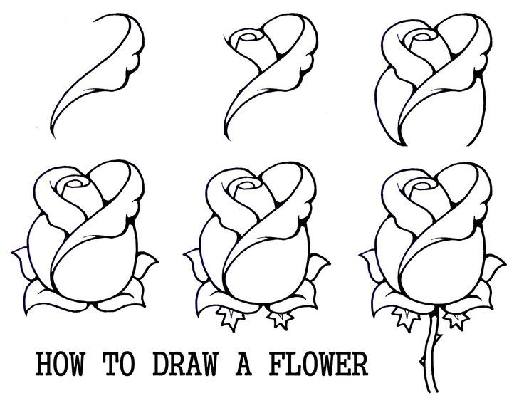 1000 Ideas About Rose Drawings On Pinterest