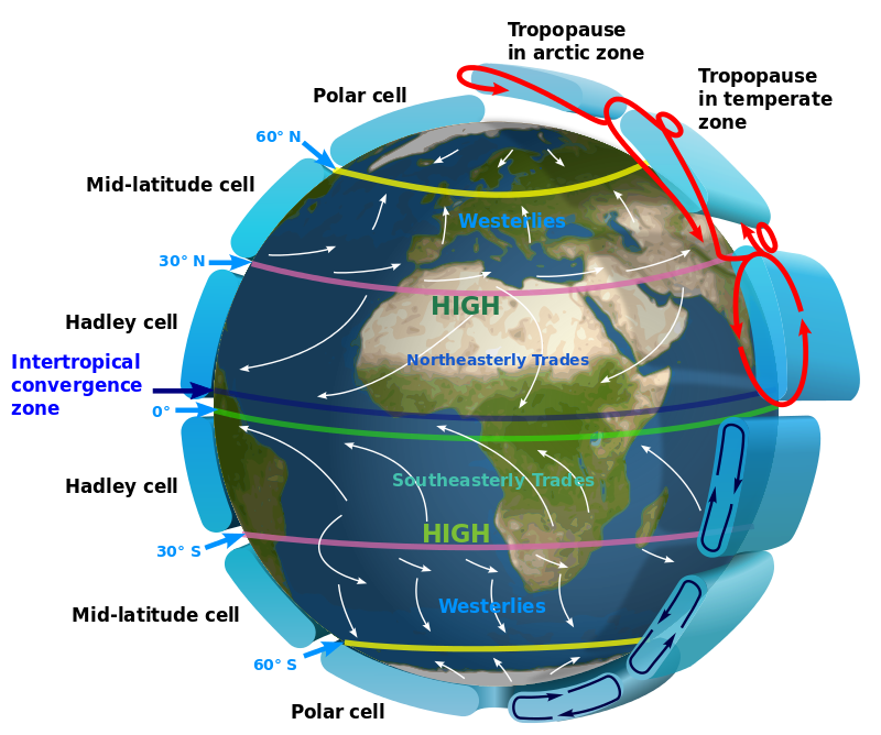 003 3D map showing Hadley cells in relationship to trade winds