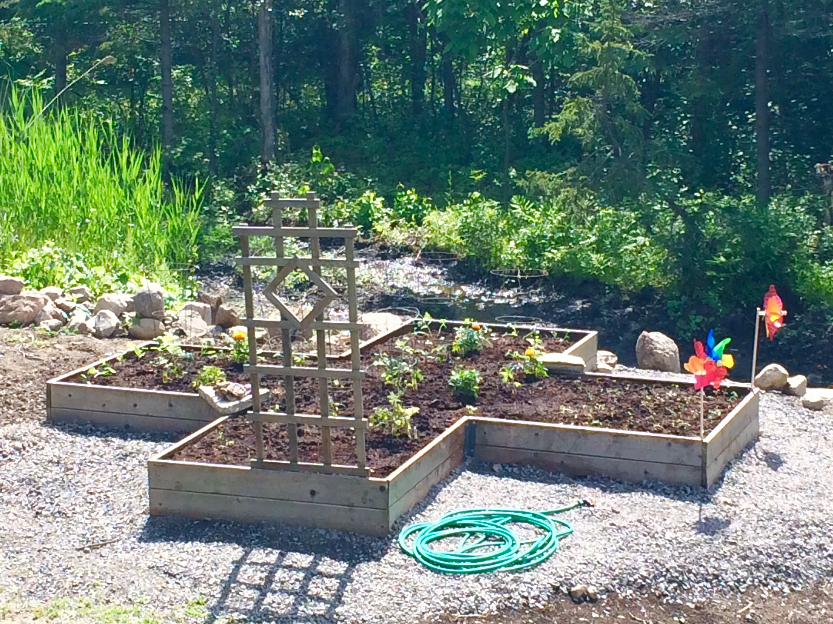 Raised bed vegetable garden X marks the