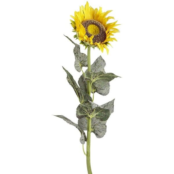 9b295fd16fa3c Pier 1 Imports Giant Faux Sunflower Stem ($20) ❤ liked on Polyvore ...