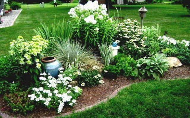 Fleurs Plante Et Jardins