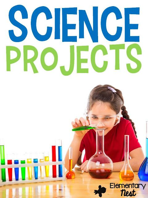 Science Projects for Elementary School Kids