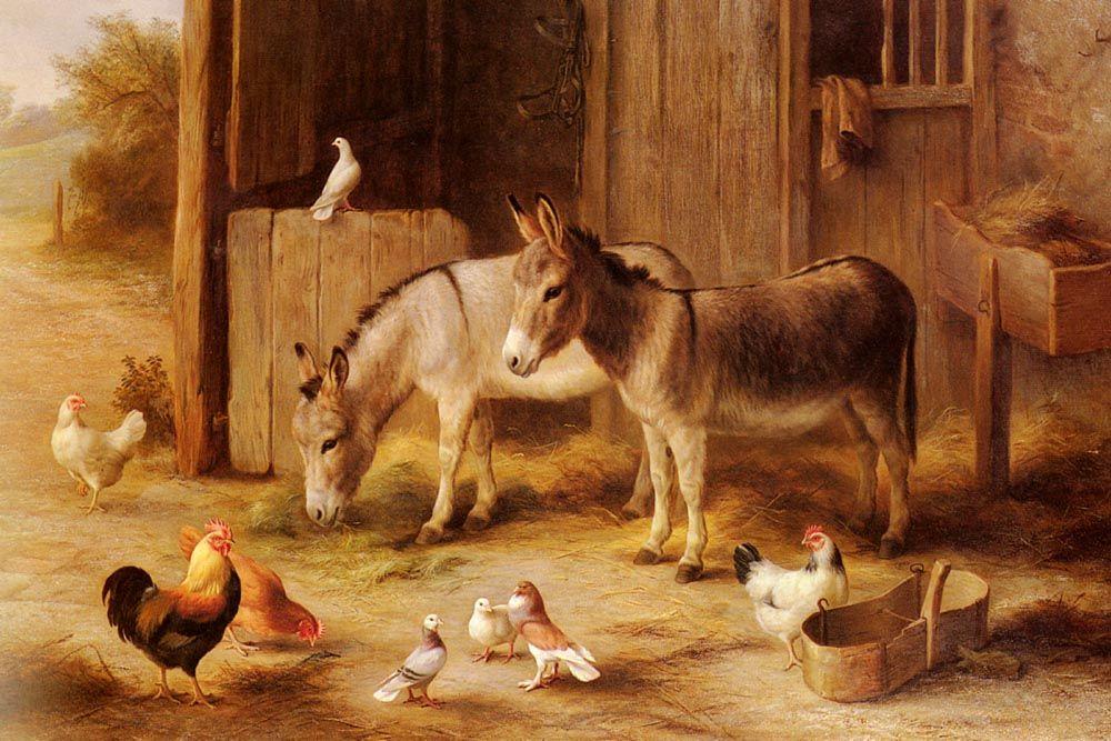 сейчас картинка скотный двор домашние животные таким весомым шагом