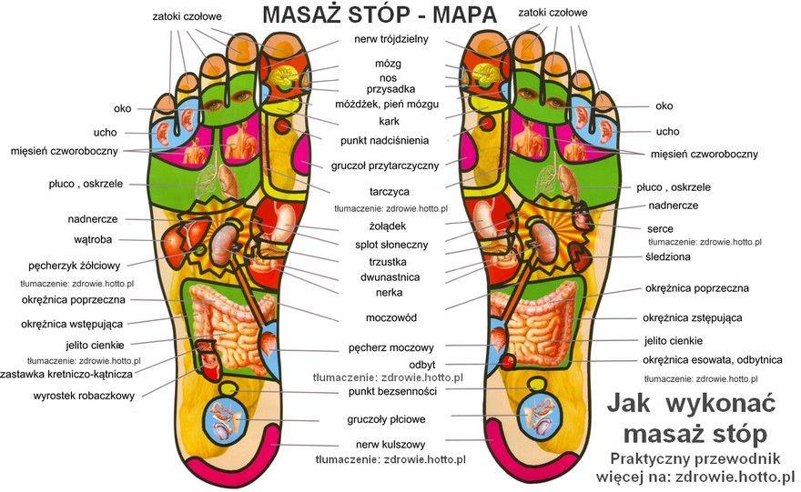 zdrowie.hotto.pl-masaz-stop-mapa-praktyczny-przewodnik-PL | Reflexology  chart, Reflexology foot chart, Foot reflexology