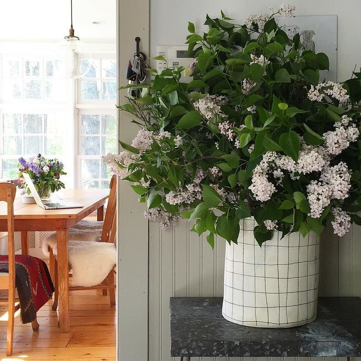 where the backyard lilacs came to rest in my favorite paula greif rh pinterest com