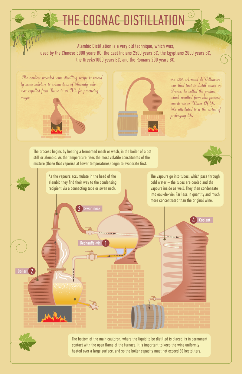 Find Out How Cognac Is Made Cognac Wine And Beer Distillation