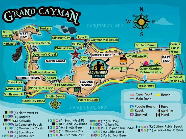 Discover the best snorkel sites in grand cayman browse