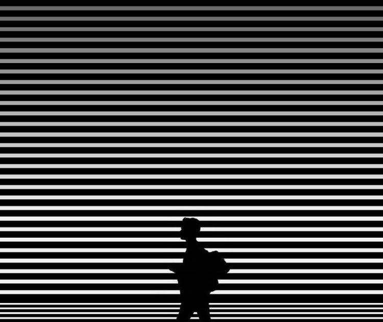 , Cara Pasang Wallpaper Zebra, Carles Pen, Carles Pen
