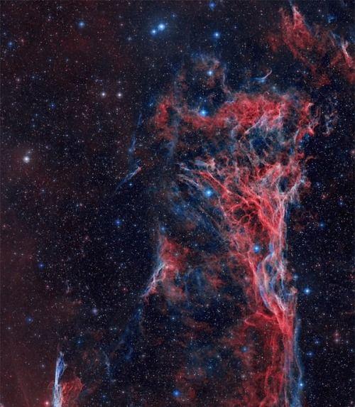 astronomicalwonders: The Veil Nebula