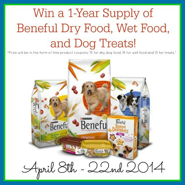 Win A Year Supply Of Beneful Dog Food Products Giveaway Dog