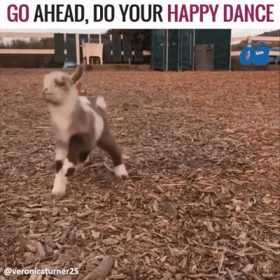 GIF See how I can dance