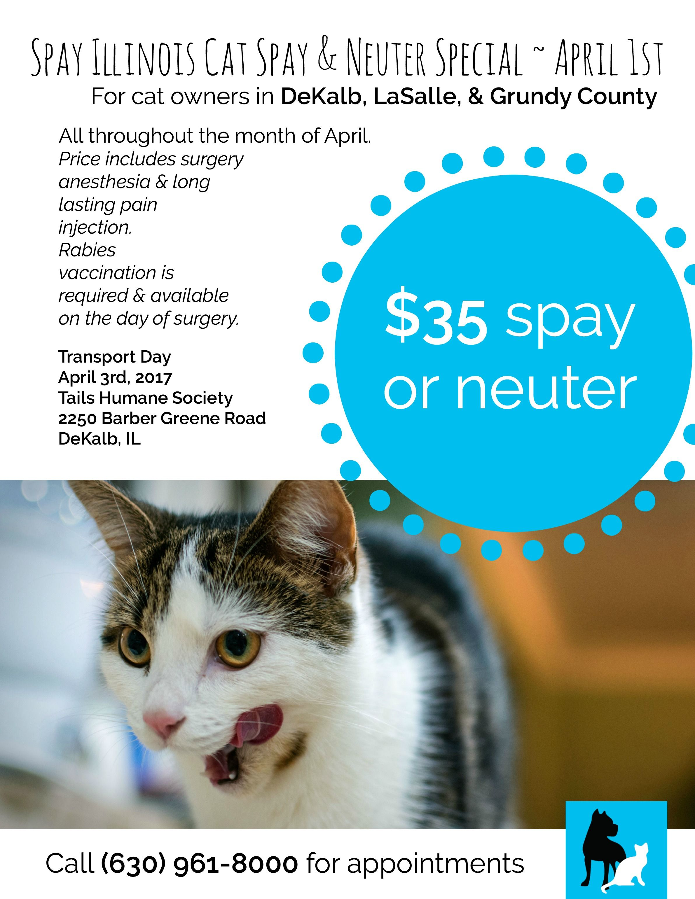 Transports For Spay Neuter Available In April From Dekalb Il Spay Grundy County Dekalb
