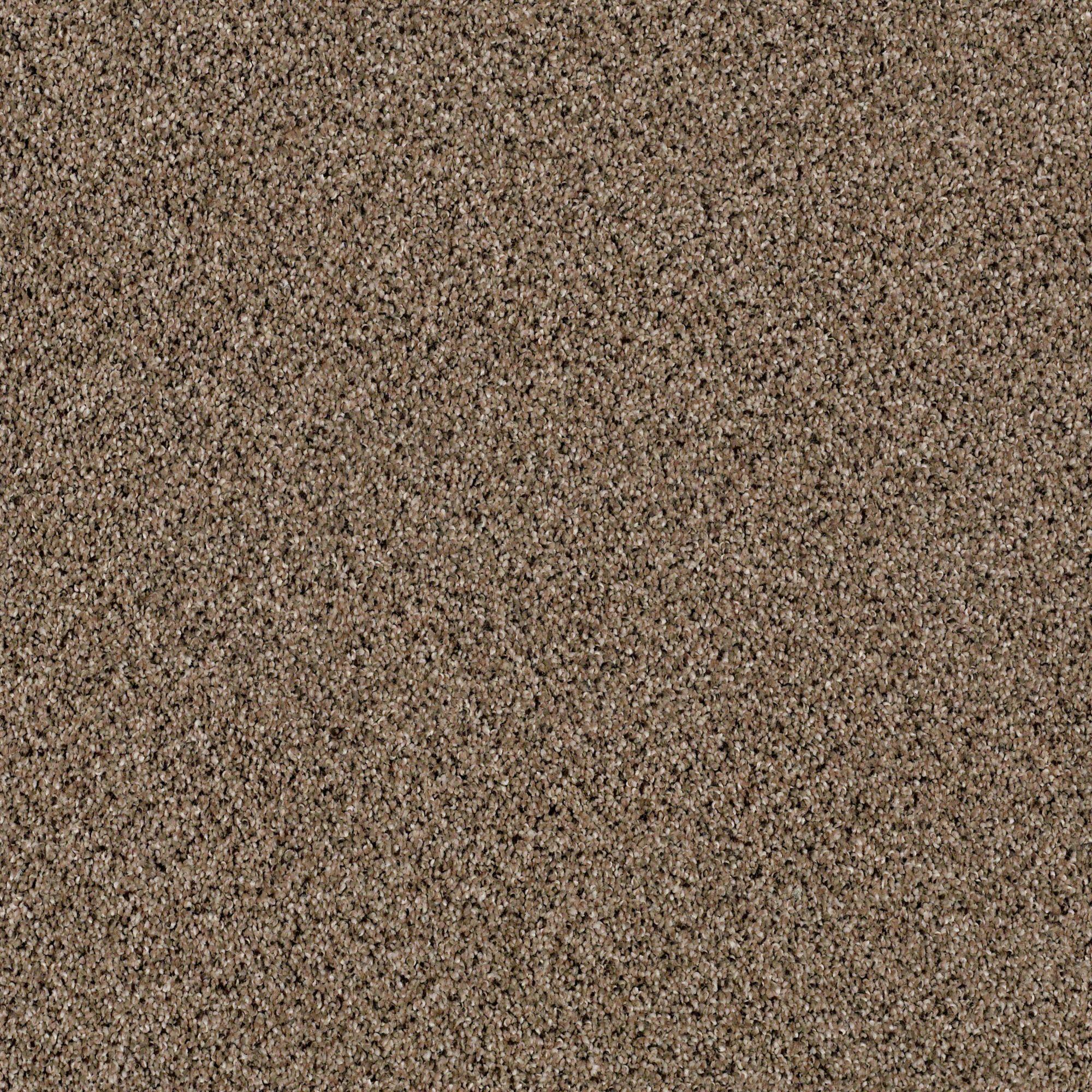 Best Iconic Element Ponytail In 2020 Frieze Carpet Carpet 400 x 300