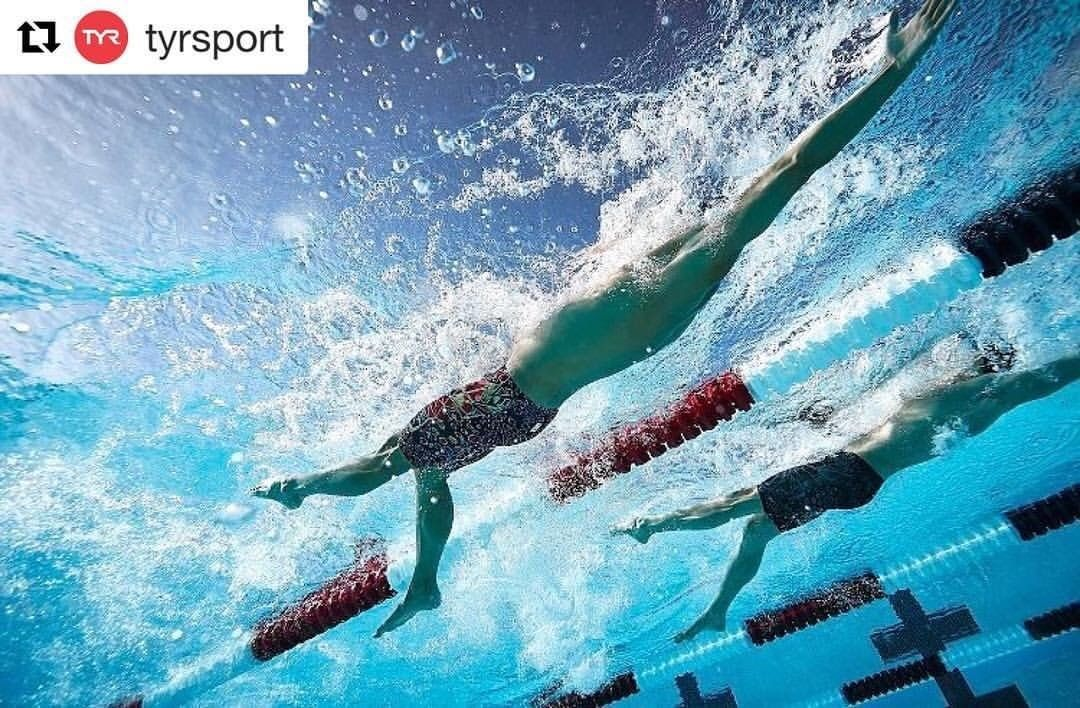 For Swimmers Swimlike On Instagram You Can Do It If You Can Dream It Swim Swimlike Swimming Swimmer Swimming Pictures Swimmer Swimming Quotes