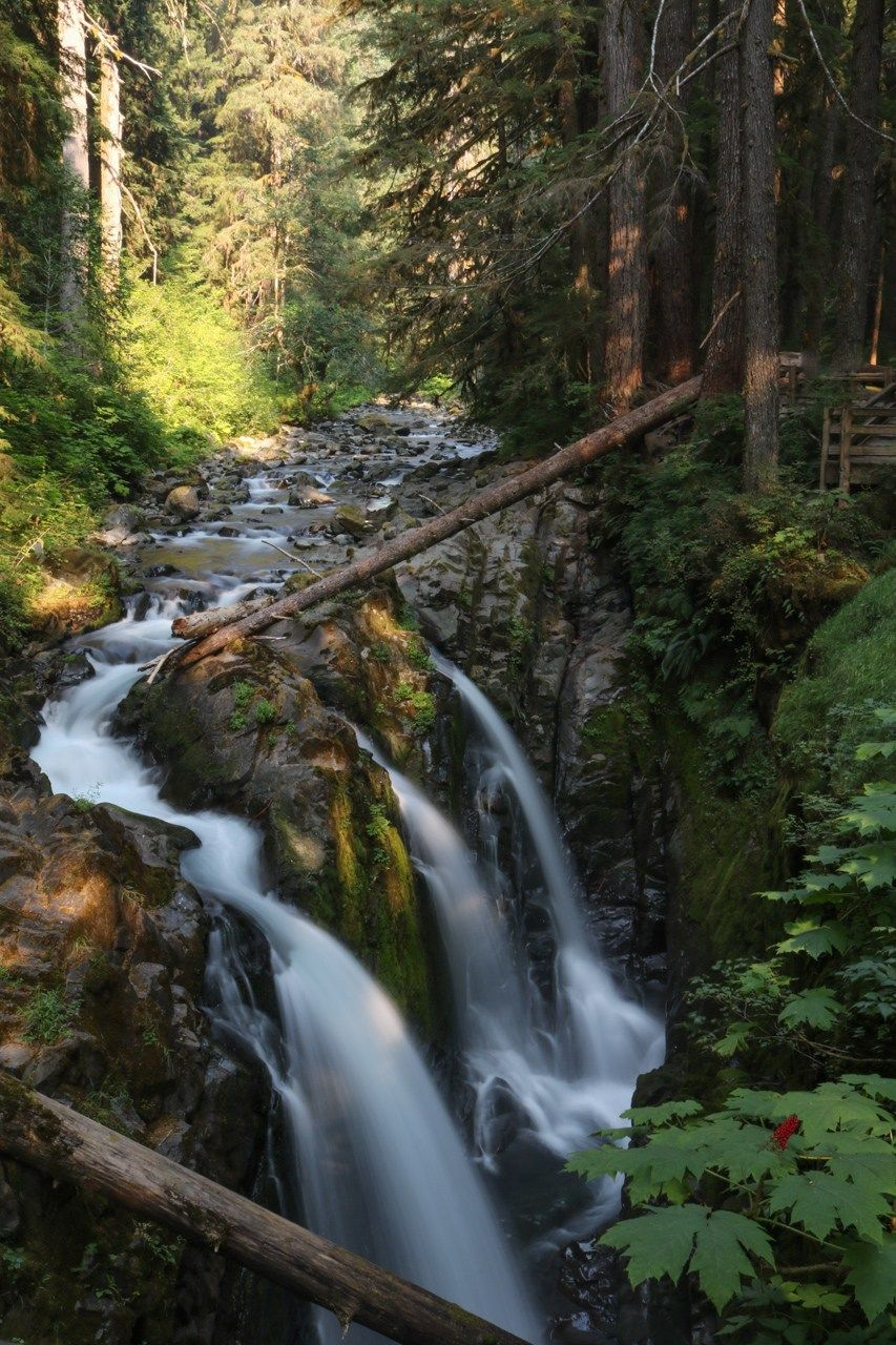 olympic national park attractions not to miss u s national parks rh pinterest com