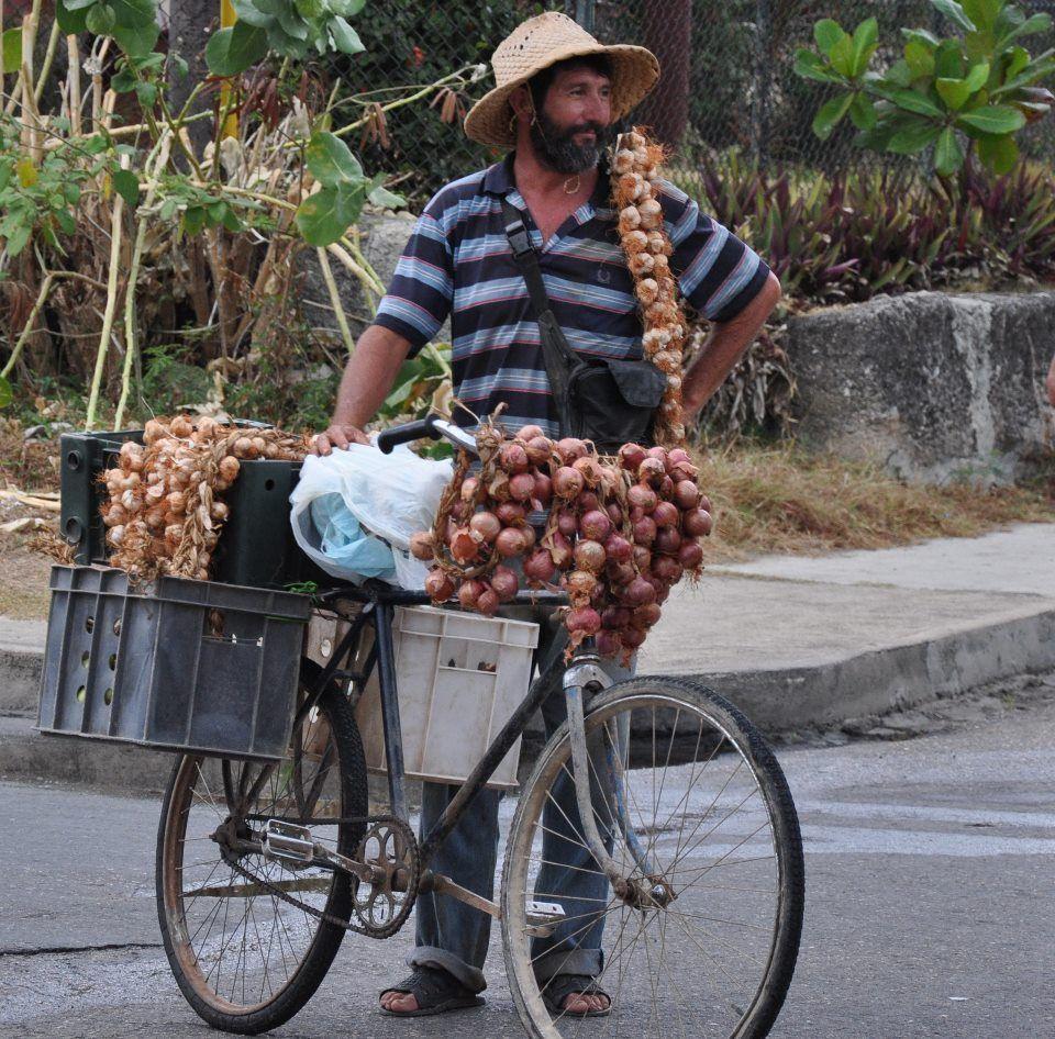 Cuban garlic & onion vender #cubaisland
