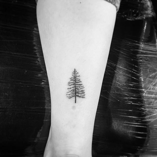 Tattooer 'OK // 1,5 Inches Evergreen Tree #🌲 #tattoobyok