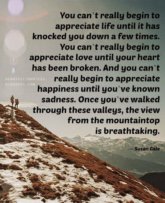 Heartfelt Quotes You can't really begin to appreciate