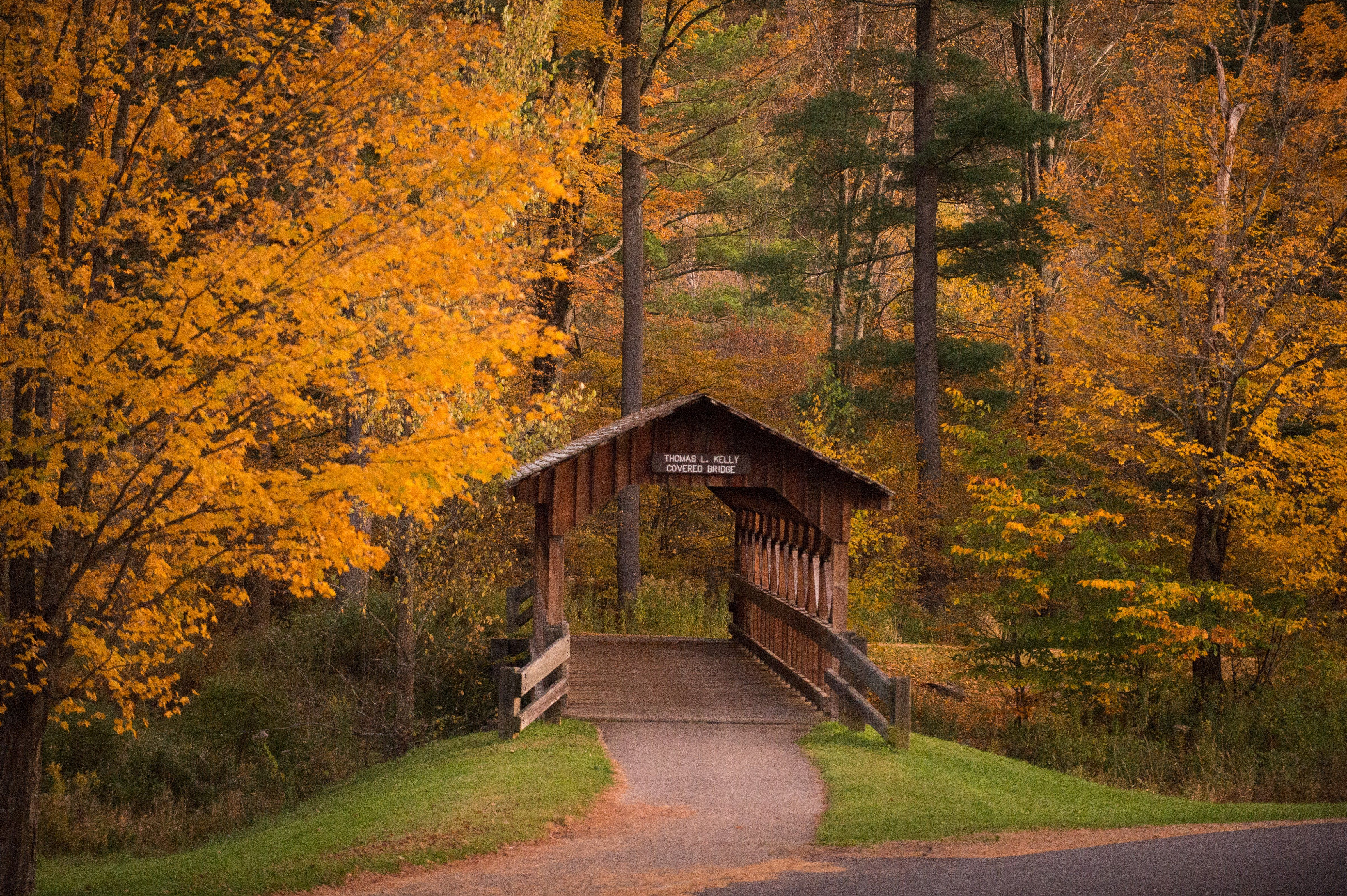 Fall foliage: A view of the Thomas L  Kelly Covered Bridge