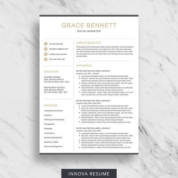 Resume Template 3 Page CV Template for Word / Resume Template + Free