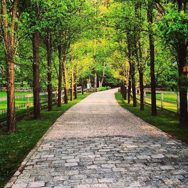 Driveway With Cobblestones And All 233 E Of Trees Smart