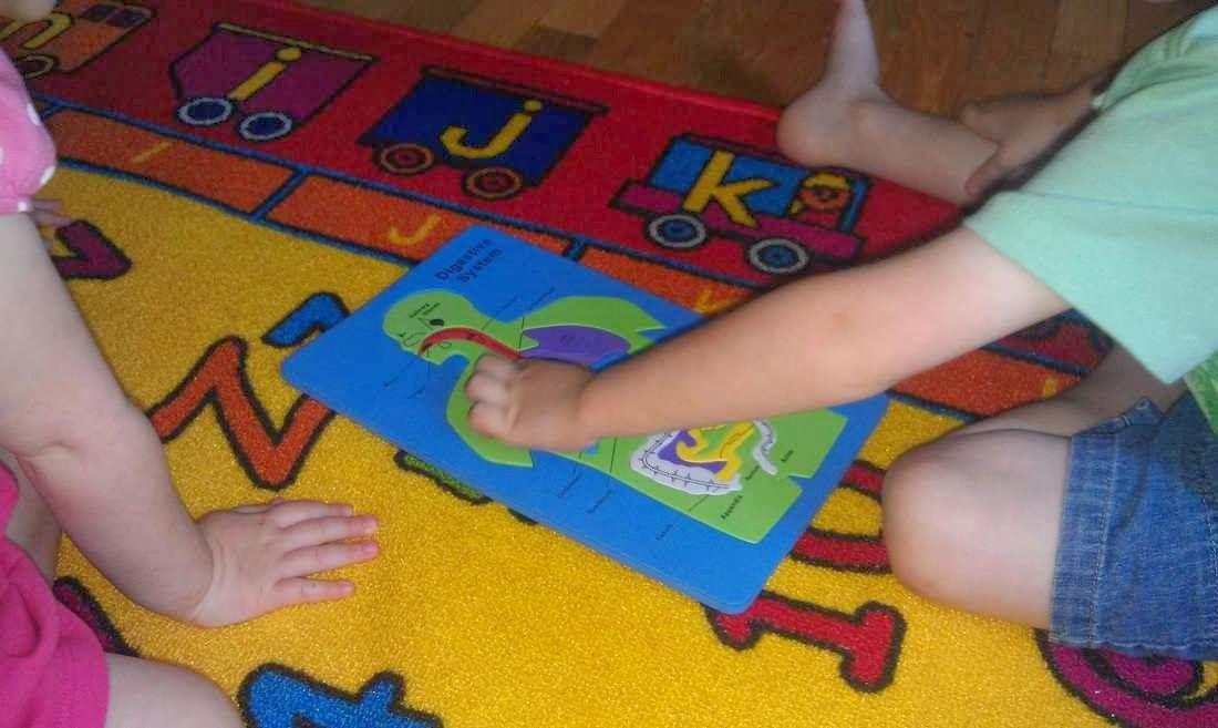رائع شرح جسم الإنسان للطفل الهيكل العظمى و القفص الصدرى و المخ و الجهاز الهضمى بالصور والفيديو Body Preschool Preschool Theme Preschool
