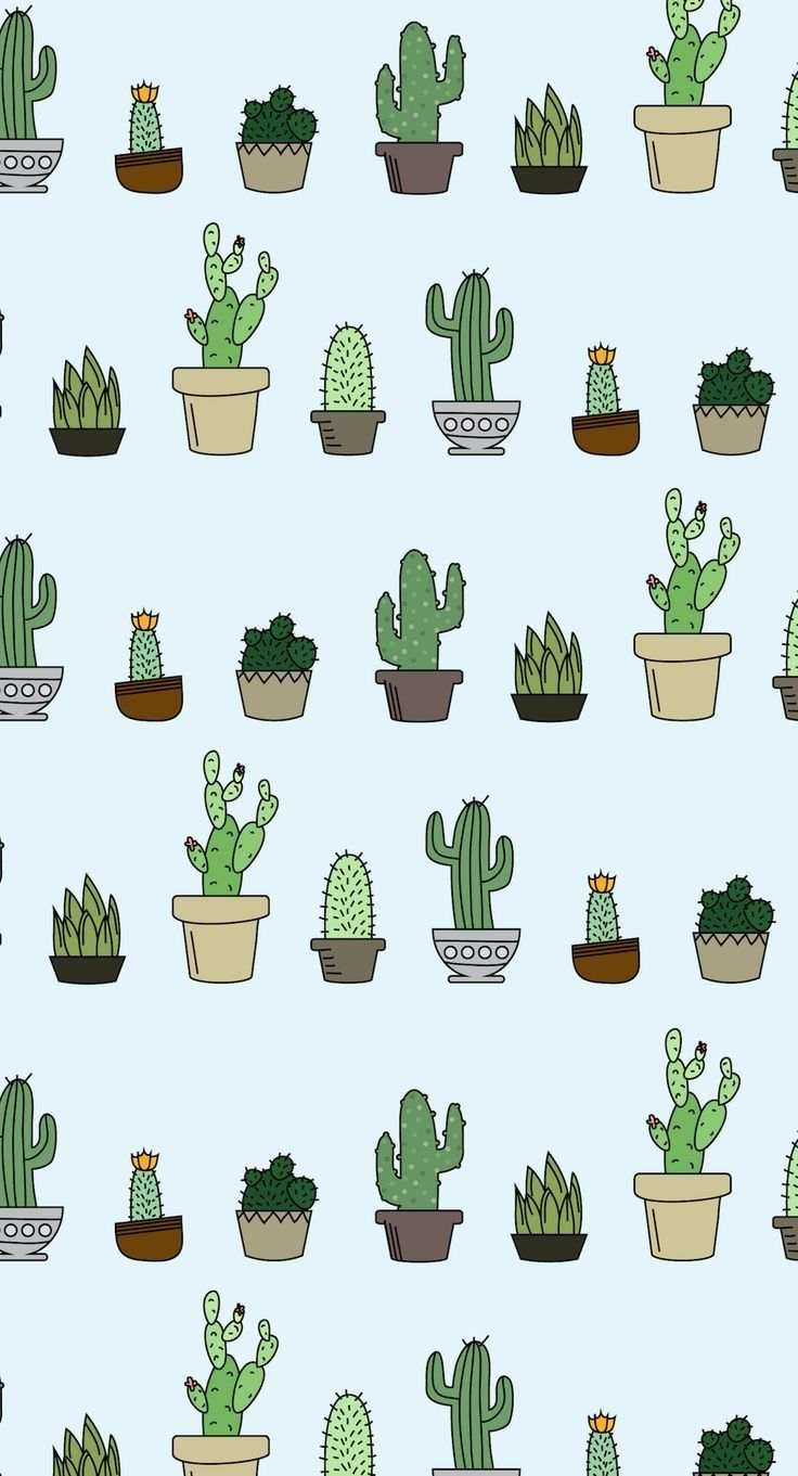 Pin By Muroshka On Wallpaper Succulents Wallpaper Wallpaper Backgrounds Cute Wallpapers Aesthetic cute cartoon cactus wallpaper