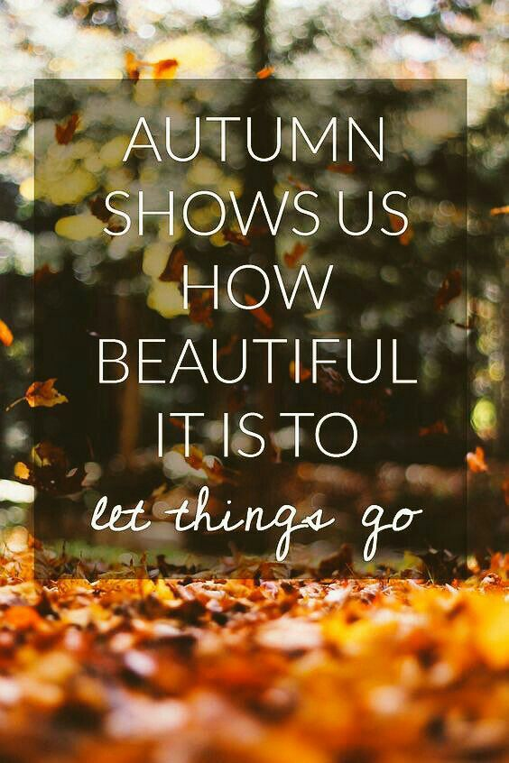 Autumn Falling Leaves Live Wallpaper That Must Be Why I Love Autumn Words Autumn Fall Quotes