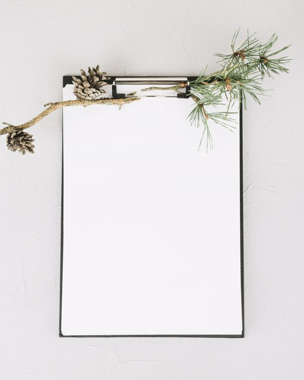 Blank paper decorated with fir branch Fr  Free Photo