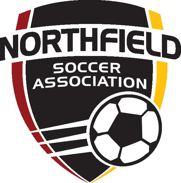 Image Result For Nsa Logo Logos Nsa Northfield