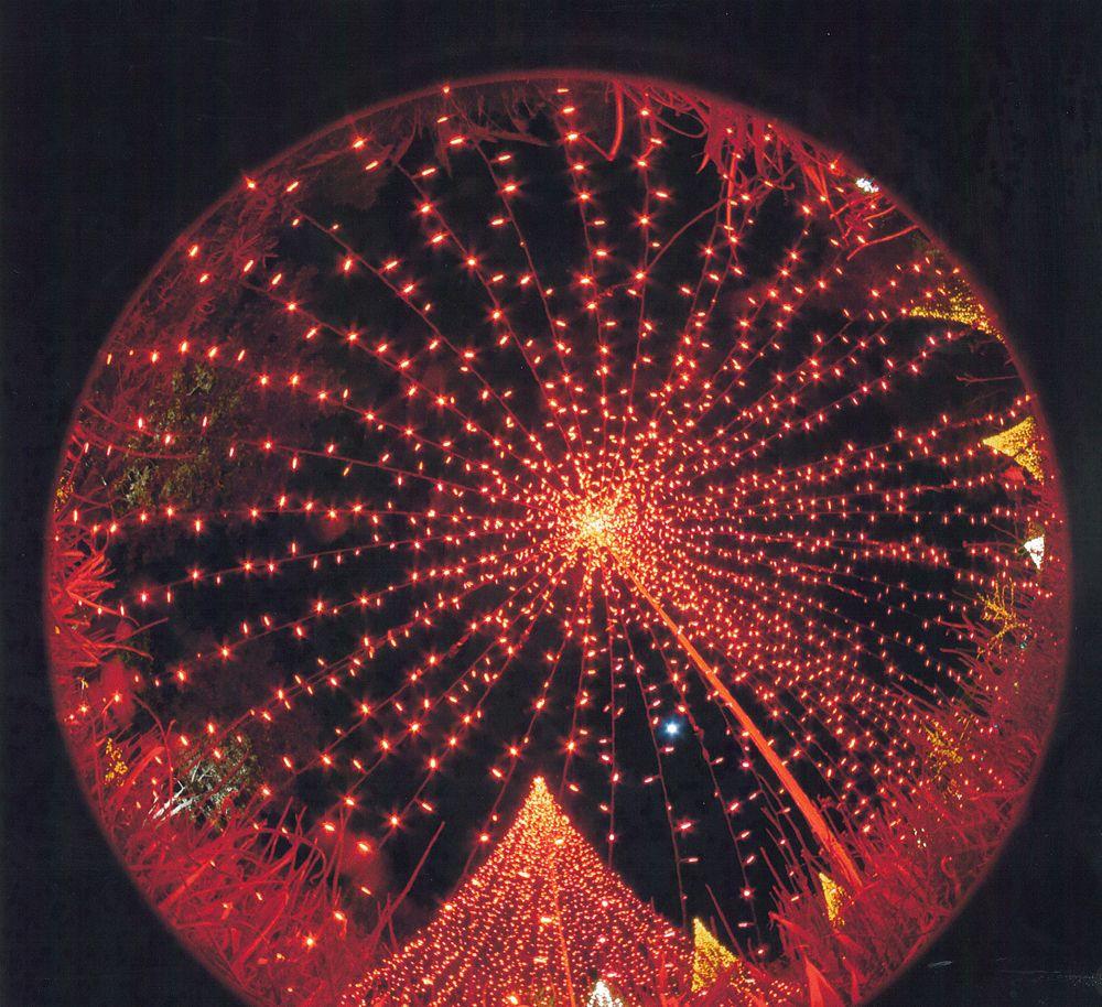Third Place, Events / Celebrations - Edgar Payne, Gastonia, S.C.