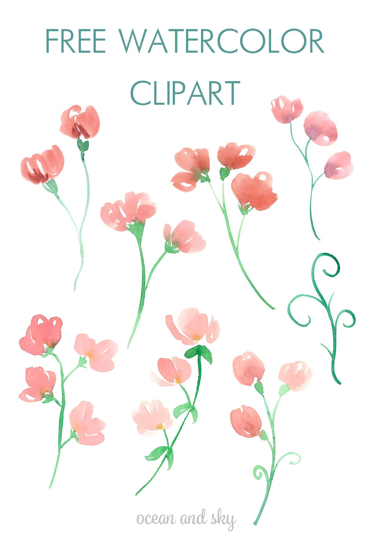 Looking For Watercolor Flower Clipart Click Through And Get Some