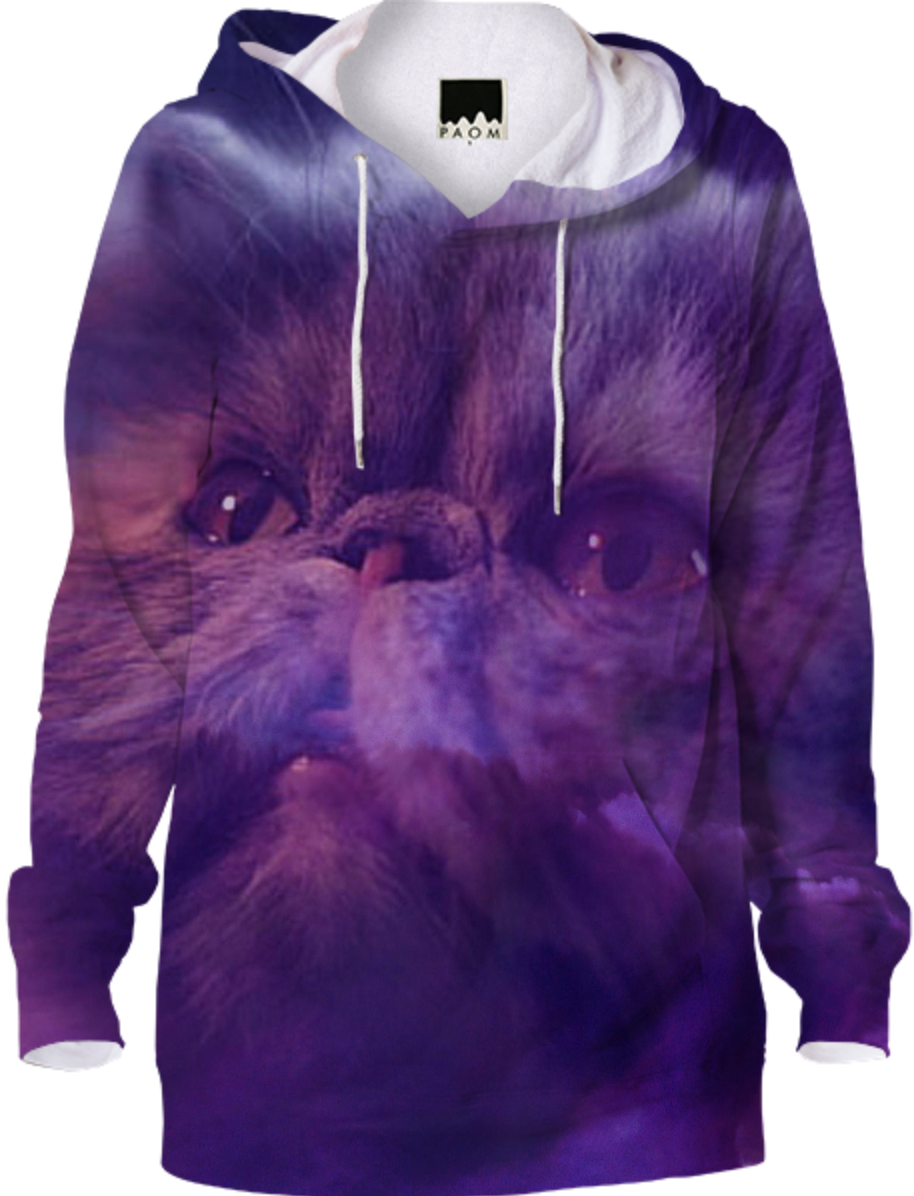 Cat and Purple Sky Hoodie #paomhoodies #cats