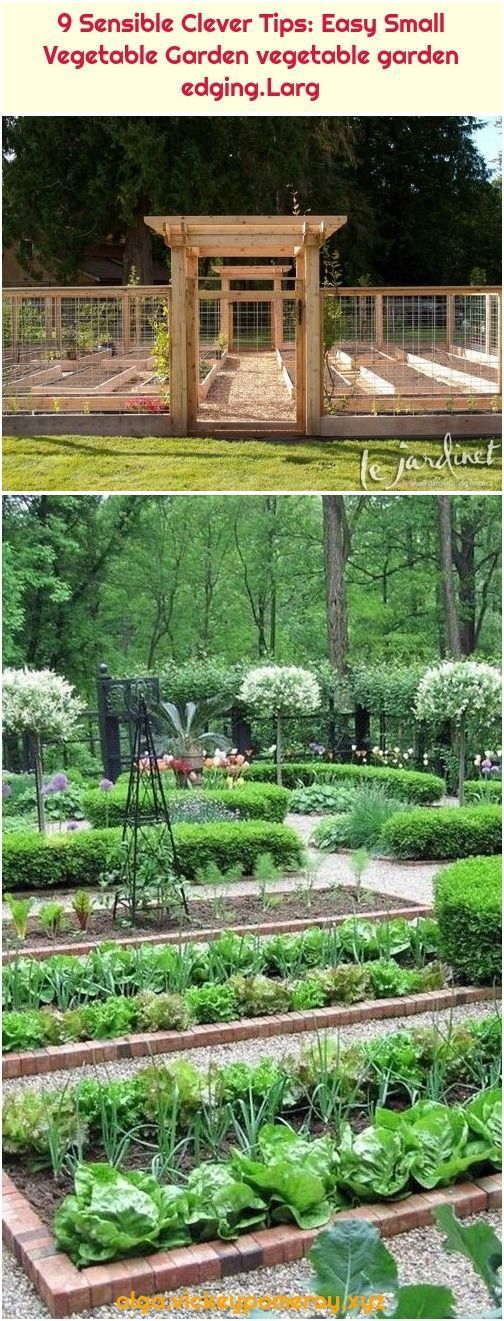 9 Clever Tips: Simple Small Vegetable Garden Vegetable Garden Border, #clevere #Easy ...#border #clever #clevere #easy #garden #simple #small #tips #vegetable