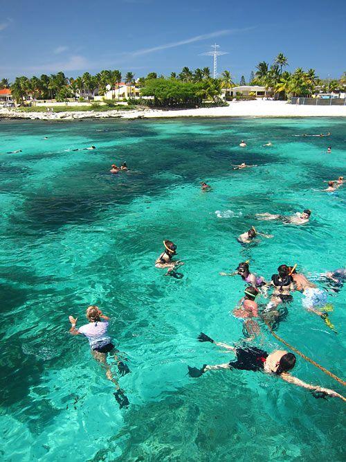 Complete Aruba Snorkeling Guide