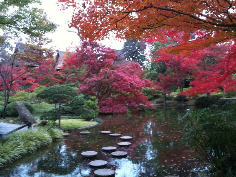 Japanese Gardens, Fort Worth Botanic Garden