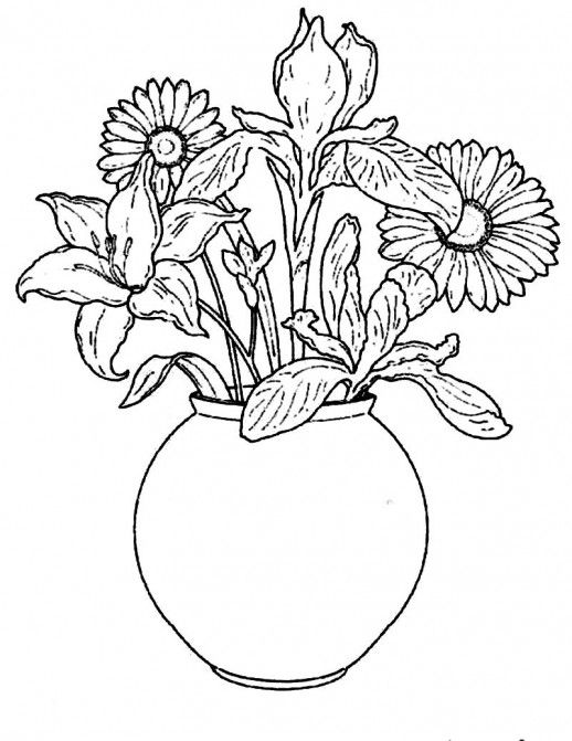Line Drawing Flower Vase : Line drawings of flowers in vases google search