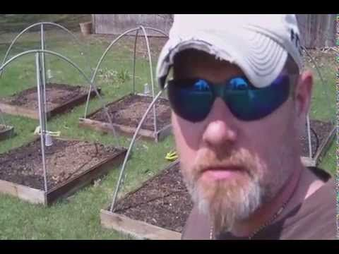 In This Video: In This Video I Show A Trick To Help Keep The Birds Out Of Your  Garden Or Raised Beds Logic Group LLC Was Launched To Bring Together Facts,  ...