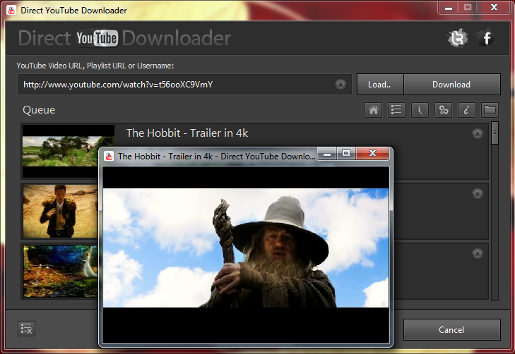 Direct YouTube Downloader :: Download and Convert Online Videos