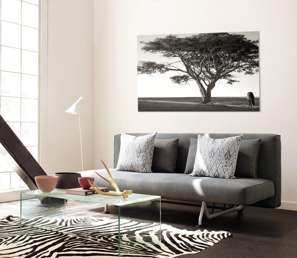 Design Within Reach modern living