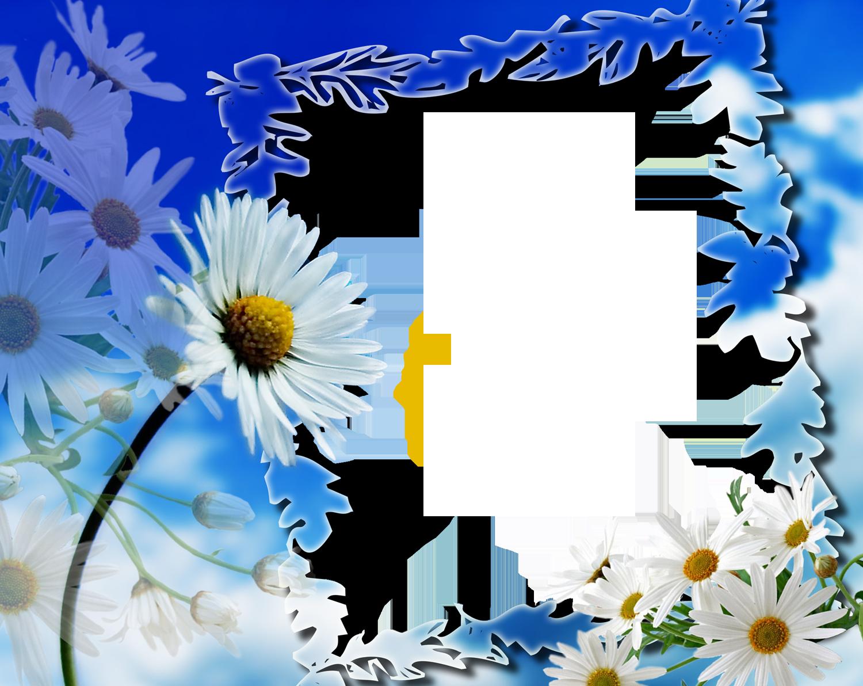 Free frames and borders png httpsyedimranrocksspot flower frames for birthdays jeuxipadfo Images