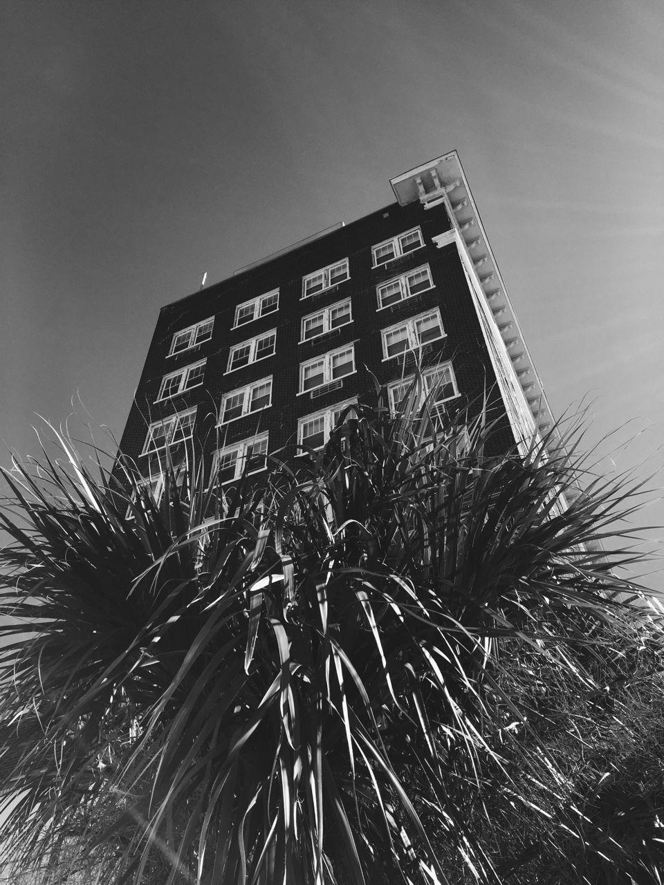 SHARP-photography NY