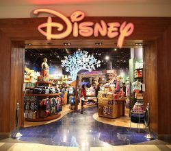 Disney Store Job Application Disney, Walt disney, Walt