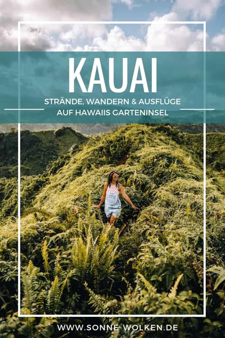 Kauai: las playas más hermosas, caminatas y destinos de excursión