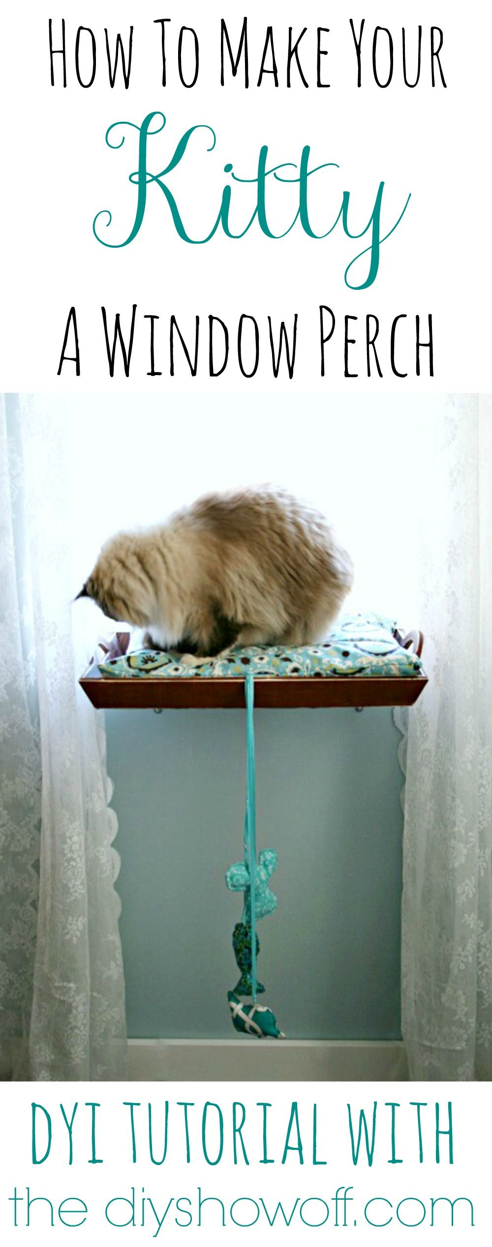 Window bed for cats  diy  how to make a cat window perch  pet beds kitty and window