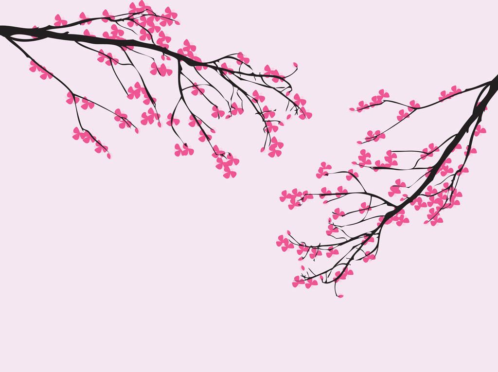Image Result For Girl Sitting Under Cherry Tree In Pink Kimono Anime Cherry Blossom Cherry Blossom Art Cherry Blossom Painting